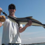 a tampa fisherman with cobia