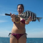 a tampa fisherman with sheepshead