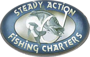Tampa Fishing Charters ~ Steady Action Charters, 813-727-9890